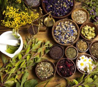Природное слабительное — фитотерапия при лечении запоров