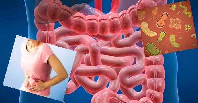 дисбактериоз кишечника
