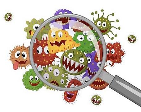 дисбактериоз под лупой
