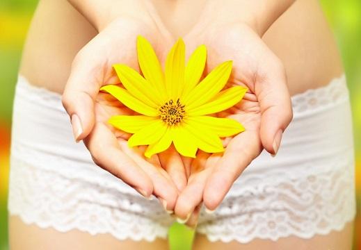 жёлтый цветок в руках женщины